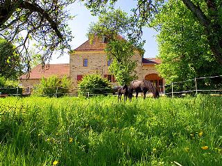 Chateau Beaucharm - Champagne-Ardenne vacation rentals