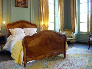 Chateau De Mairie - Chateau - Clamanges vacation rentals