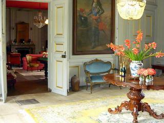 Chateau De Mairie - 12pax - Clamanges vacation rentals