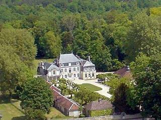 Chateau De Foulze - Mussy-sur-Seine vacation rentals