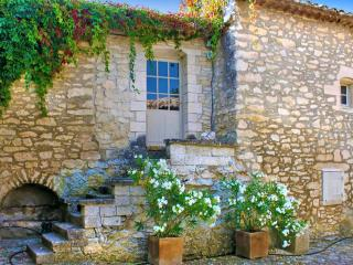 Le Mas Aloes, Pet-Friendly Vacation Rental with a Pool, Luberon - Oppede vacation rentals