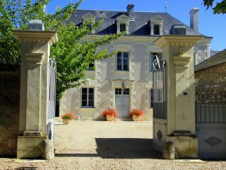 Chateau De Grazay - Ligre vacation rentals