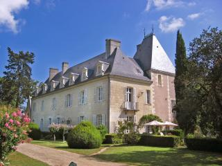 Chateau De Tille And Cottage - Beaumont-en-Veron vacation rentals