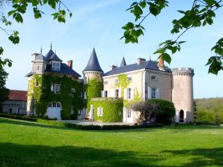 Chateau St Victor - Ingrandes vacation rentals
