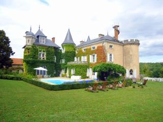 Chateau St Victor Estate - Ingrandes vacation rentals