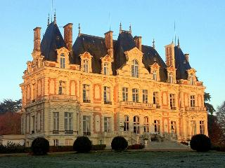 Chateau Dove - France vacation rentals