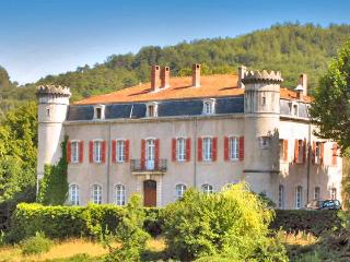 Chateau De Bouji And Gites - Saint-Thome vacation rentals