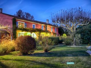 Mas Des Loones, Pet-Friendly St Remy Rental with Pool and Fireplace - Villeneuve-les-Avignon vacation rentals