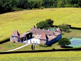 Chateau Duras - Gironde vacation rentals