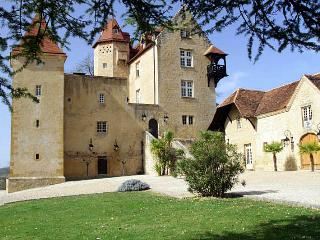 Chateau De Bearn - Escures vacation rentals