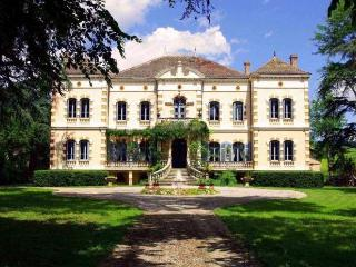 Chateau Gaillac - Penne vacation rentals