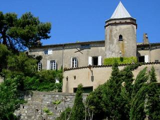 Chateau Carcassona - Aude vacation rentals