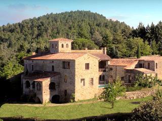 Chateau De Mazelle - Saint-Paul-le-Jeune vacation rentals