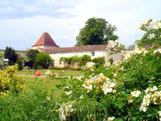 Domaine St Surin - Charente-Maritime vacation rentals