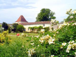 Domaine St Surin - Belluire vacation rentals