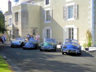 Chateau Ardille - Ardilleux vacation rentals