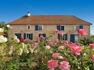Manoir De Trebuchet - La Roche-Posay vacation rentals