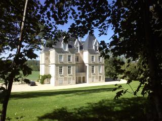 Chateau Segalin - Vienne vacation rentals