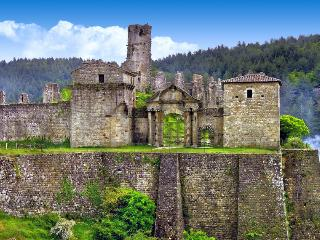 Chateau De Baloigne, Pet-Friendly Provence Vacation Rental - Valgorge vacation rentals