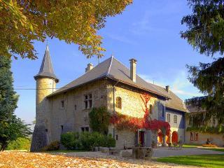 Chateau Ste Genevieve - Saint-Pierre d Albigny vacation rentals