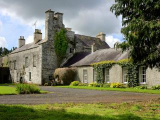Irish Country Castle - County Meath vacation rentals