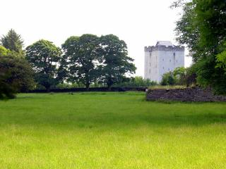 Deburgo Castle - Kilmaine vacation rentals