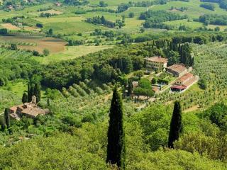 Villa Soldani Estate - San Leolino vacation rentals