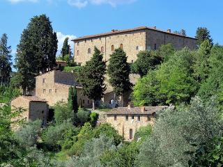 Castello Tenuta - San Casciano in Val di Pesa vacation rentals