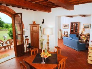 Lupina Estate - Bucine vacation rentals
