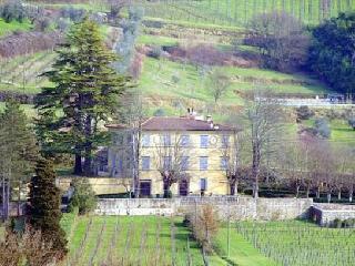 Villa Salica - Serravalle Pistoiese vacation rentals