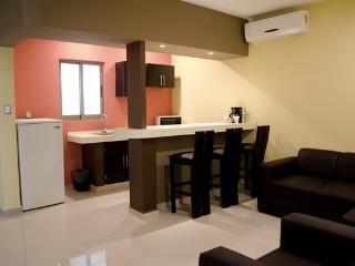 Veracruz Hotel & Suites - Veracruz vacation rentals