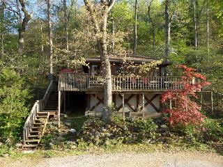 Lake Lucerne 1930s Cabin - Lake Front, Amazing View, Large Decks, Authentic Architecture - Eureka Springs vacation rentals