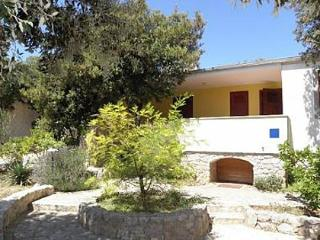 4467 A2(4+1) - Petrcane - Petrcane vacation rentals