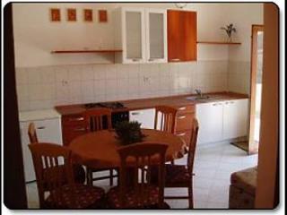 4468 A2 Mihael(4+1) - Petrcane - Susica vacation rentals