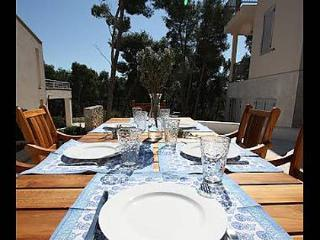 5233 H(6+2) - Milna (Brac) - Milna (Brac) vacation rentals