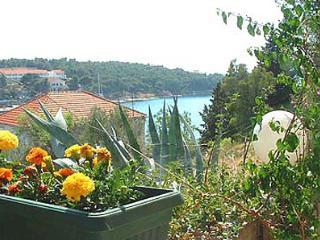 01901MILN A2 gornji (2+2) - Milna (Brac) - Milna (Brac) vacation rentals
