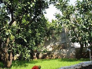 2120 A1(2+2) Donji - Lumbarda - Lumbarda vacation rentals