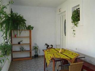 02204VIS  A1 Zeleni(5) - Vis - Vis vacation rentals