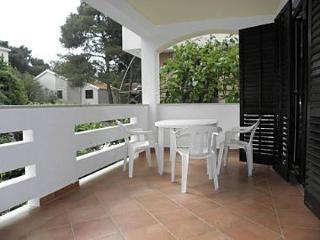 2556 A1(4+2) - Petrcane - Petrcane vacation rentals
