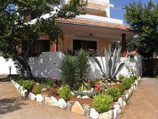 2598 A3(2+2) - Susica - Veli Rat vacation rentals