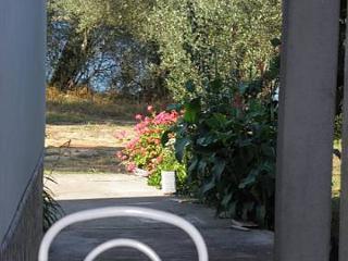 2685 A1(2+1) - Luka - Luka vacation rentals