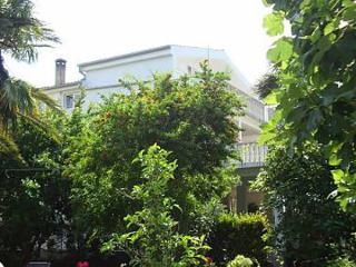 3451 A3(6) - Bibinje - Bibinje vacation rentals