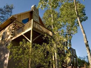 Deep Creek Fishing Retreat - Two bedroom getaway with beautiful meadow view - Bryson City vacation rentals