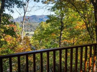 Stargazer at Deep Creek - Secluded Log Cabin with Long Range View Minutes to Waterfall Hikes - Bryson City vacation rentals