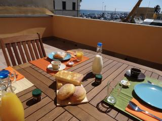 apartment on the harbor of Imperia - Imperia vacation rentals