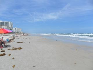 FALL RATES,  BEATIFUL CONDO ACROSS ST.  BEACH - New Smyrna Beach vacation rentals