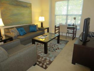 Lux 2br Apt nr Princeton University - Princeton vacation rentals