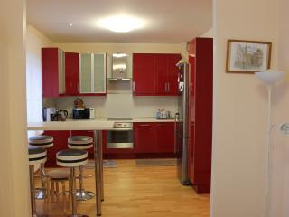3-bedroom flat near subway Udelnaya - Saint Petersburg vacation rentals