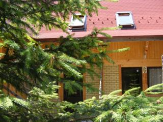 TraveLand Poiana Brasov - Duplex One-Bedroom Apart - Poiana Brasov vacation rentals