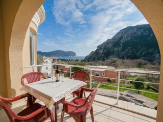 Apartments Jovićević - Two Bedroom Apartment with Balcony and Sea View 1 - Montenegro vacation rentals